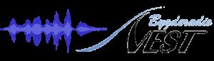 BrV Logo 450x120 med lydspor
